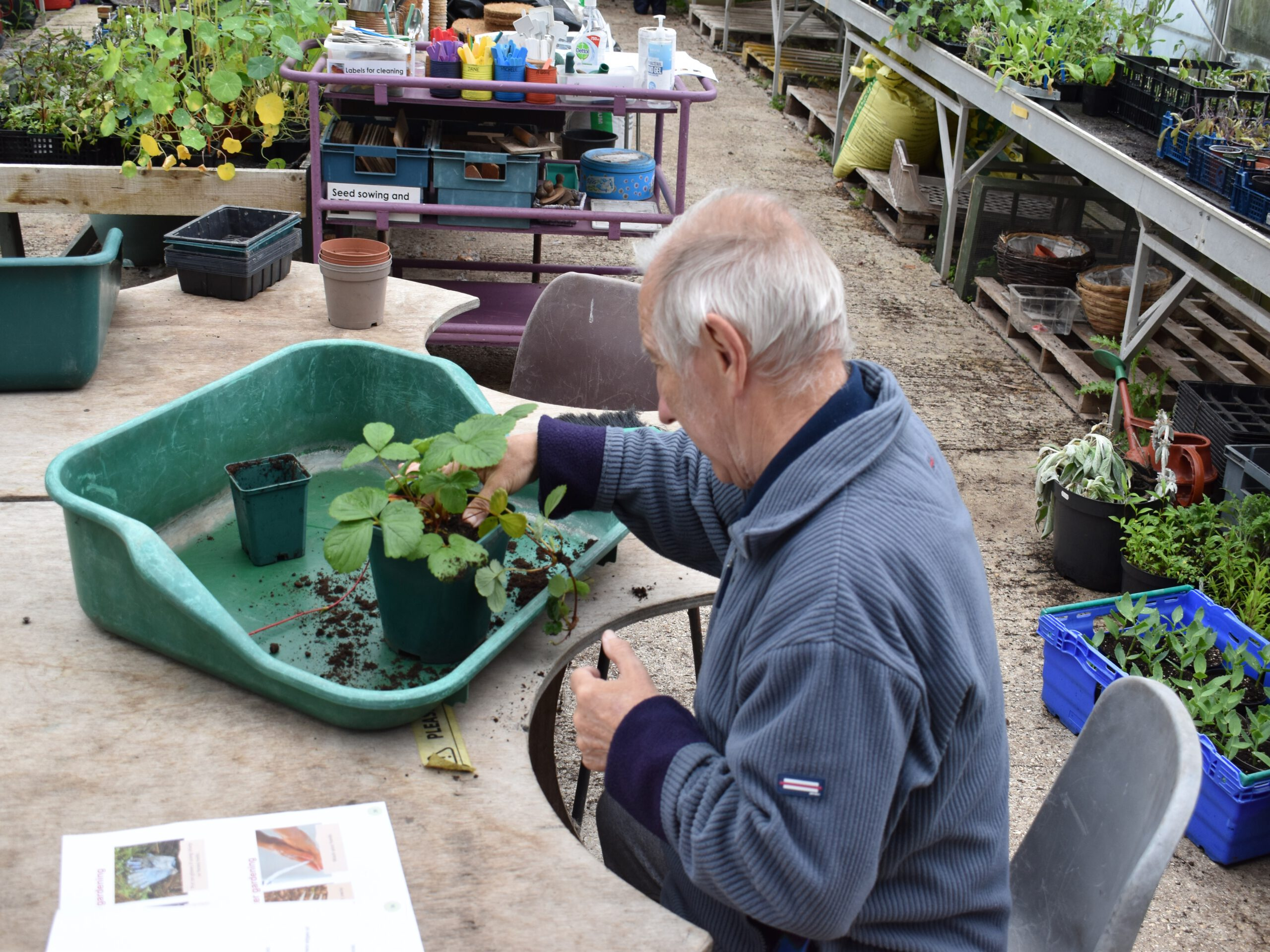 Robert gardening 44
